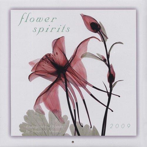 Flower Spirits 2009 Wall Calendar (Calendar)