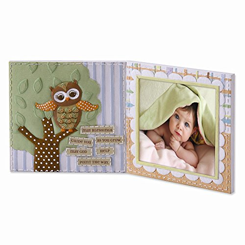 Fly Frames (Roman, Inc. Learning to Fly Owl Photo Frame * Sacrament Catholic)