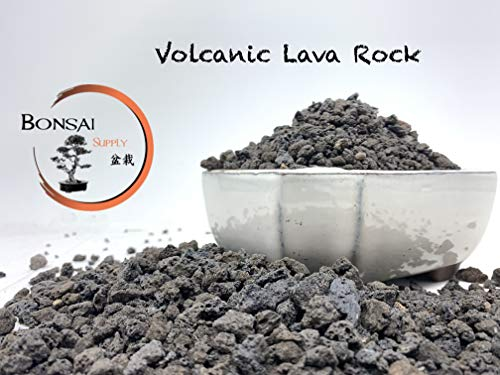 Lava Rock, The Bonsai Supply - 2 Quart Bag (Black) 1/4 inch Horticultural Lava Rock Soil Additive for Cacti, Succulents, Plants - No Dyes or Chemicals - 100% Pure Volcanic Rock Top Dressing