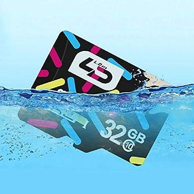 Voiks Tarjeta de Memoria 32G/16G Ultra Micro SD HC Clase 10 ...