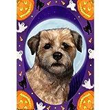 Best of Breed Halloween Howls Garden Size Flag Border Terrier For Sale