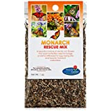 Monarch Butterfly Rescue Wildflower Seeds Bulk Open-Pollinated Wildflower Seed Packet, No Fillers, Annual, Perennial Milkweed