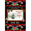 Barry the Lonely Reindeer & His Bashful Elf (Willy the Kinky Elf & His Bad-Ass Reindeer Book 4)