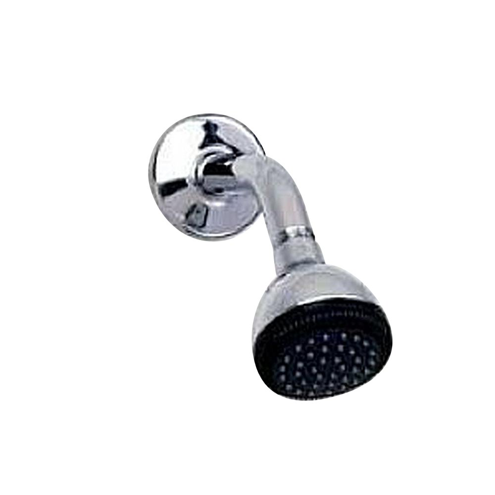American Standard 8888.075.002 Easy Clean Showerhead, Polished ...