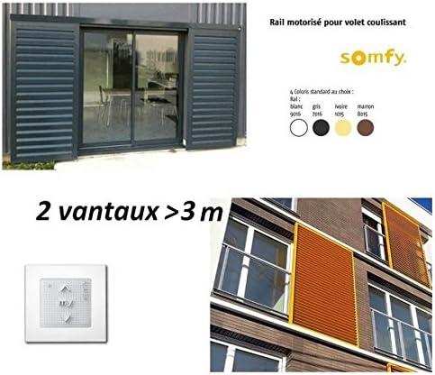 SOMFY-Motorización para persiana puerta 2 hojas Sup-standard-1240160 à3m color: Amazon.es: Iluminación