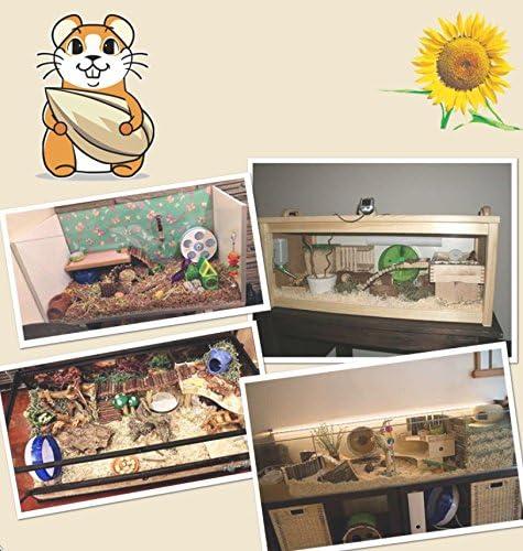 TFXWERWS Juguete para Mascotas, hámsters, Tortuga, cobaya, Erizo, Valla de Madera, Escalera Suave: Amazon.es: Productos para mascotas