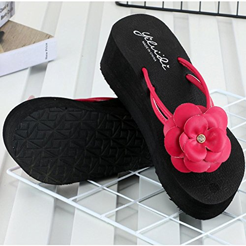 con B Plataforma con y para Sandalias Logobeing de Zapatillas Mujeres Playa Cuña Chanclas Zapatos Cuña Mujeres Beach para zTPFPqn