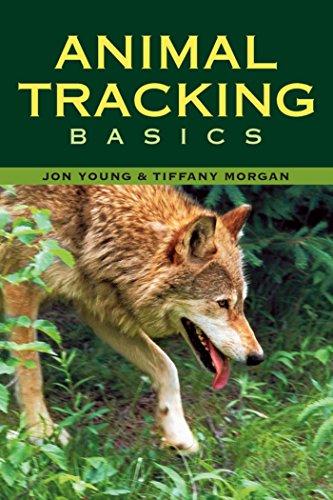 (Animal Tracking Basics)