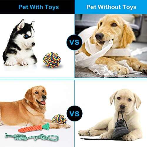Dog Toys Set, FOCUSPET Small Dog Pet Cat Cotton Rope Chew Play Toys Set Pack Kit for Pull Play Training Teeth Cleaning Durable Chew Interactive Knot Dogs Toys for Puppy Small & Big Dogs,8 Pack by FOCUSPET (Image #4)
