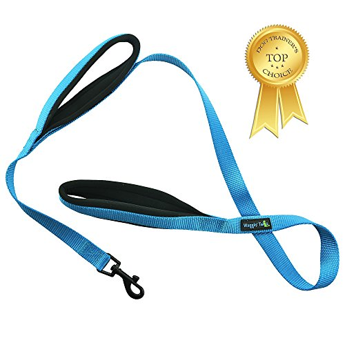 Waggin Tails Soft and Thick Double Handle Premium Nylon 4FT x 3/4Inch Leash - Dual Soft Padded Handles for Ultimate Control - Classic Comfort for Small to Large Dogs (Bright Blue)