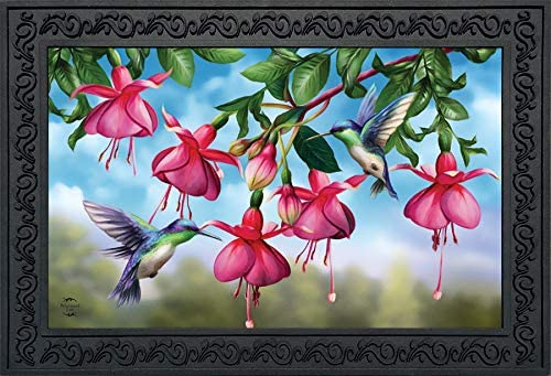 Briarwood Lane Flight of The Hummingbirds Spring Doormat Floral Indoor Outdoor 18 x 30