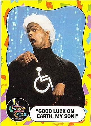 damon wayans handicap man