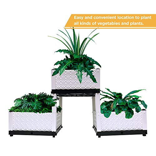 Three Raised Garden Beds for Planting | Each Box Measures 15 X 15 X 9 Inches | Herb Boxes for Indoor Gardening | Elevated Plant Bed for Vegetables and Flowers | Waterproof Rectangular Pots for Outdoor
