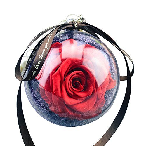 A.B Crew Romantic Auto Car Rearview Mirror Ornament Hanging Preserved Fresh Flower Pendant (Red Rose)