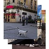 岩合光昭の世界ネコ歩き 第2弾 ブルーレイ 全3枚セット【NHKスクエア限定商品】