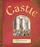 Castle: A Three-Dimensional Interactive Adventure
