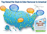 Pet Stain & Odor Remover, Enzyme Cleaner, Odor