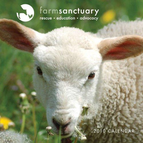 Farm Sanctuary 2010 Wall Calendar