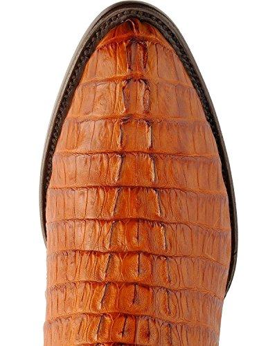 Ferrini Mens Kajman Svans Cognac Läderstövlar Konjak