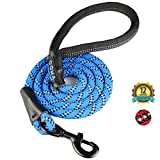 GOMA Industries Dog Leash - Best Heavy Duty and Reflective Lead - 100% Nylon Increased Safety leashes for Night Walking - for Small, Medium and Large Sized Breed - Made with Mountain Climbing Rope