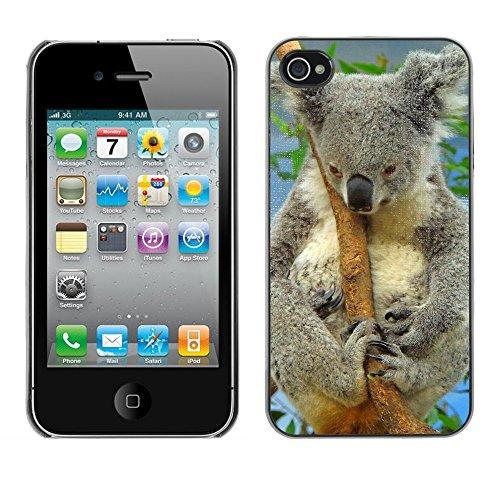 Premio Sottile Slim Cassa Custodia Case Cover Shell // F00004186 koala // Apple iPhone 4 4S 4G