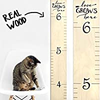 Wooden Growth Chart Ruler for Boys & Girls | Sayings Rulers | Growth Chart Art