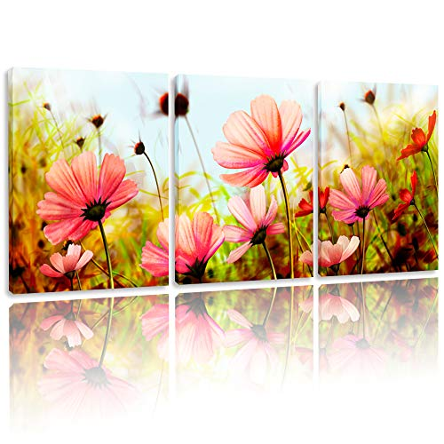 (BPAGO Modern Flowers Painting Plateau Gesang Wall Decor Landscape Paintings on Canvas Wall Art for Living Room Bathroom Decoration (36 x 16 inch))