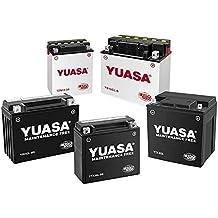 Yuasa YB10L-B2 YuMicron Battery for 1988-2010 Suzuki DR650SE/GSX600/GS500 Model