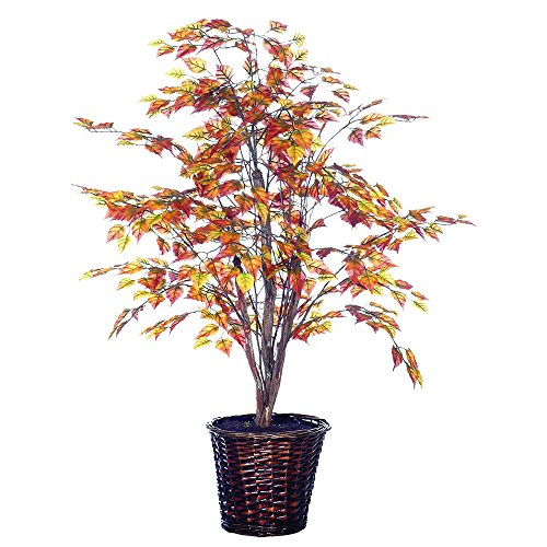 Vickerman 4-Feet Artificial Golden Birch Bush in Decorative Rattan Basket