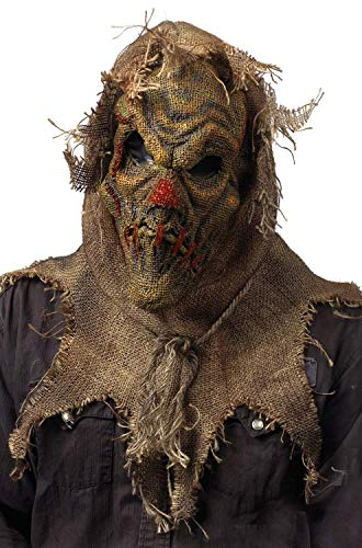 Fun World Men's Scarecrow Gunny Sack Mask, Multi, Standard -
