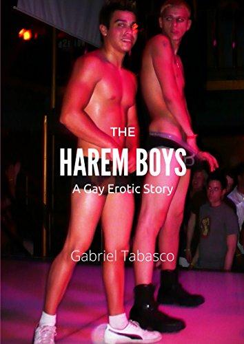 Gay male erotic literature
