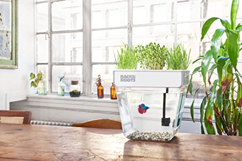 Back To The Roots Water Garden Betta Fish Tank 3 Gallon Hydroponics Growing System Fish Tank