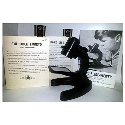 Vintage 1965 National Teaching Aids Inc. Micro-Slide-Viewer w/ The Chick Embryo & Pond Life (Chick Embryo Slides)