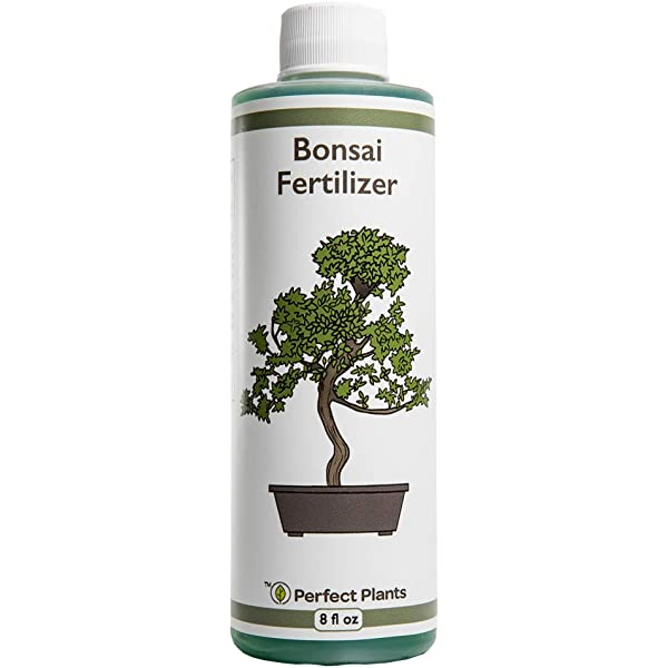 Amazon Com Bonsai Fertilizer Plant Food For Live Bonsai Tree In Pots Starter Kit Grow Care Formulated For Indoor Plants By Aquatic Arts Garden Outdoor