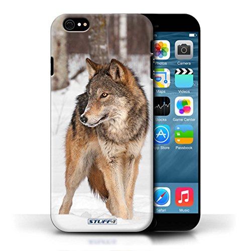 Kobalt Lupo stampato Custodia Cover per Apple iPhone 6/6S cellulari telefoni / Collezione Animali selvatici