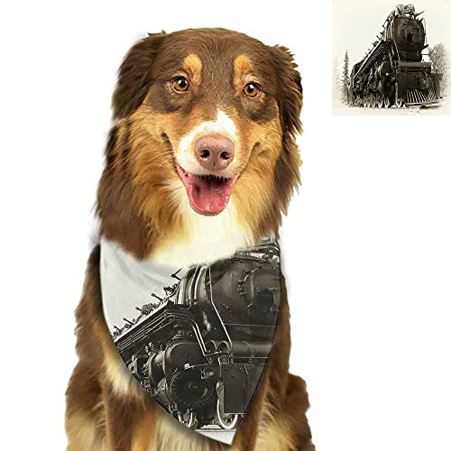 SLLART Pet Dog Scarf Steam Engine,Antique Northern Express Train Canada Railways Photo Freight Machine Print,Black Grey Bibs Colorful