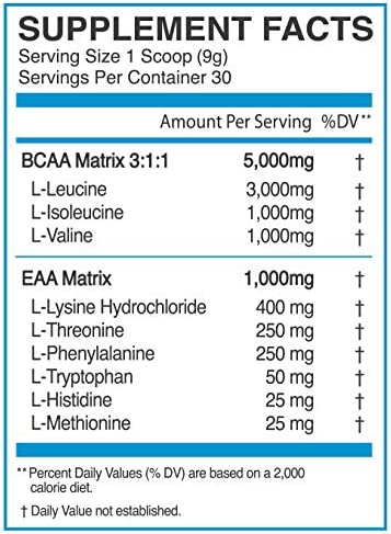 eFlow Nutrition Endure BCAA Plus EAA – Essential Amino Acids Electrolyte Powder Intra Workout – Improve Energy, Recovery and Performance – Raging Rocket Pop 30 Servings