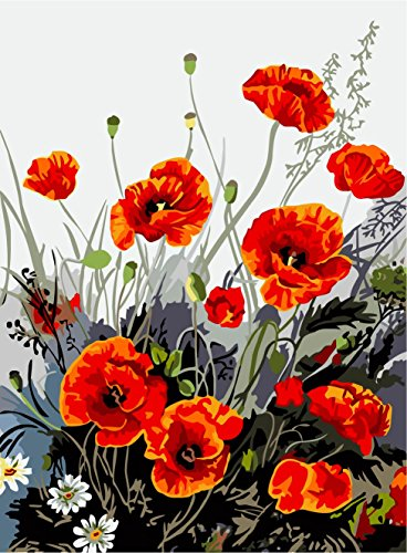 [, Wooden Framed or Not ] Diy Oil Painting by Numbers, Paint by Number Kits - Red Poppy 1620 inches - PBN Kit for Adults Girls Kids White Christmas Decor Decorations Gifts (Paint By Number Advanced)