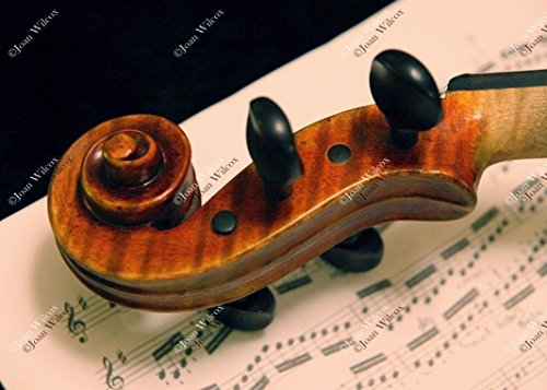 Violin Concerto Music Classical Instrument Neck Tuning Pegs Fiddle Original Fine Art Photography Wall Art Photo ()