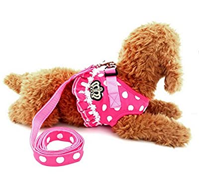 Ranphy Polka Dot No Pull Vest Harness Leash Set Soft Mesh Padded Lead for Small Dog Cat Pet Harness Adjustable