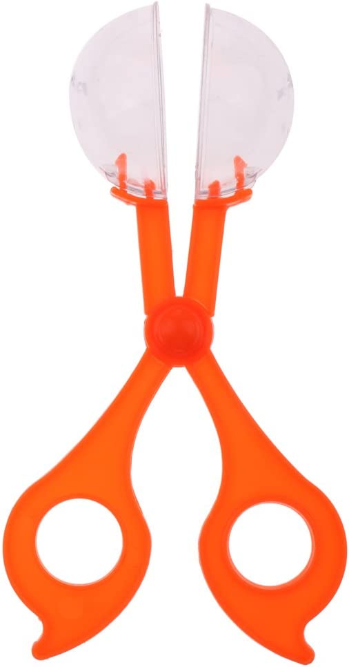 MagiDeal Tijera Abrazadera Anti Insecto de Plástico Trampa de Insectos Juguete Regalo para Niños - A
