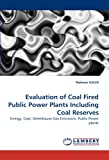 Evaluation of Coal Fired Public Power Plants Including Coal Reserves, Mehmet Guler, 3838381750