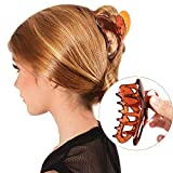 Bleaching Hair Everyday - RC ROCHE ORNAMENT Womens Butterfly Wing Hair Clip Strong Holding Sectioning Cute Plastic Girls Ladies Beauty Accessory Tool Jaw Clamps Claw Clips, 6 Pack Count Large Brown
