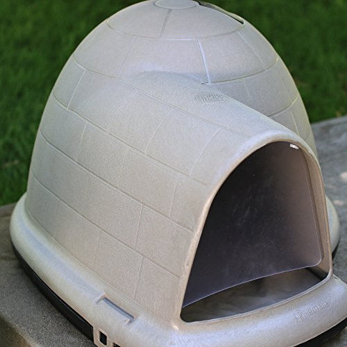 Amazon.com  Petmate Indigo Dog House with FREE Dog Door - Tan - Large - (43.8L x 34W x 25.8H in.)  Pet Supplies & Amazon.com : Petmate Indigo Dog House with FREE Dog Door - Tan ...