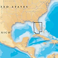 NAVIONICS MSD/632P+ / Navionics Platinum Plus - South & Central Florida - microSD/SD