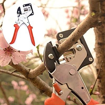 OAGTECH Seedlings Engraft Grafting Garden Tools Nursery Fruit Trees Grafting