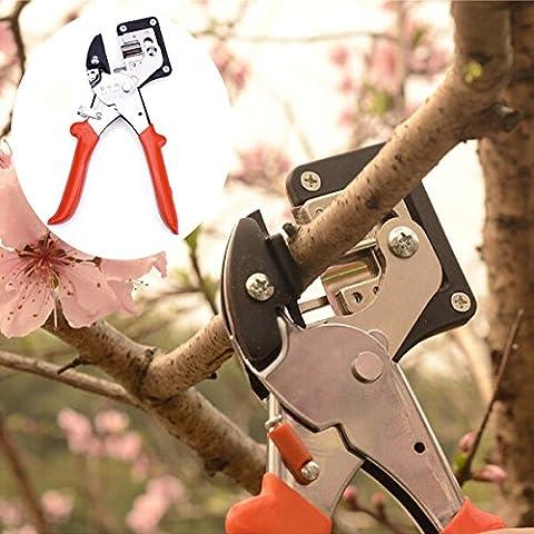 RoseBlue byRisa Seedlings Engraft Grafting Garden Tools Nursery Fruit Trees Grafting - Pruning Ficus Tree