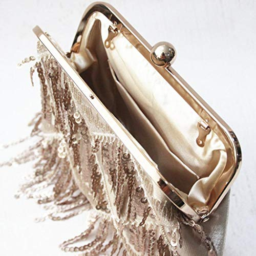 Party with Clutch EROUGE Women Purse Tassels Sequin Evening Wedding Designer for Handbags Bag qvgx5Hwg