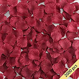 HO2NLE 2000 Pcs Artificial Flowers Silk Rose Petals Wholesale Home Party Ceremony Wedding Decoration (Red) 60