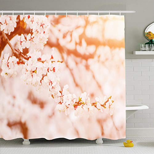 (Ahawoso Shower Curtain 60x72 Inches Blooming Blue April Blossoming Apricot Tree Spring Time Green Nature Bloom Blossom Design Orchard Waterproof Polyester Fabric Bathroom Curtains Set with Hooks)